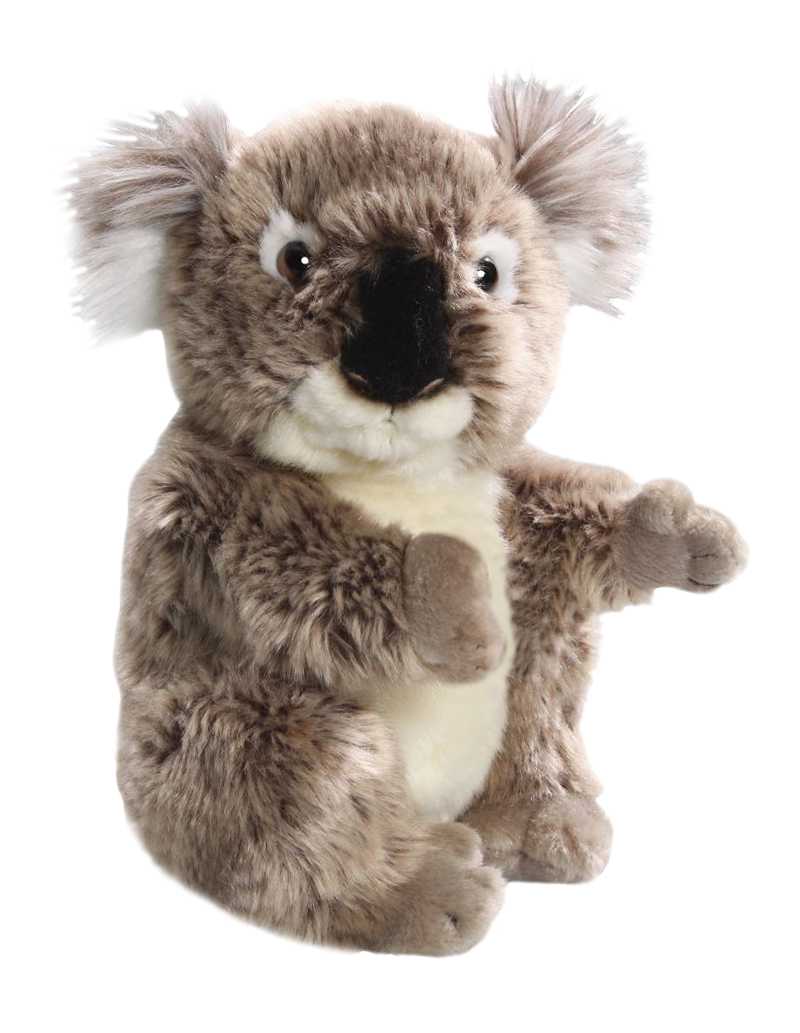 Plyšová koala - Authentic Edition (21,5 cm)