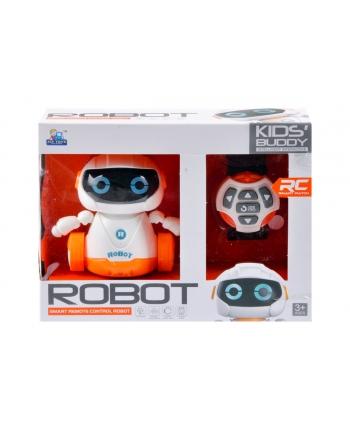 Robot R/C 21x17cm