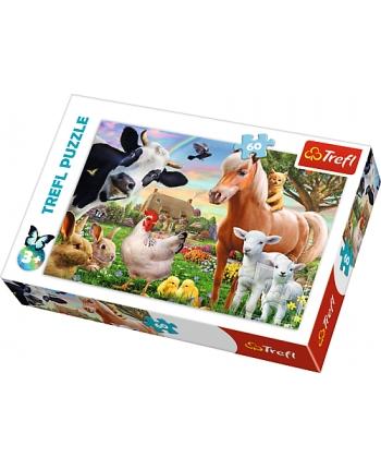 Puzzle 60 Farma