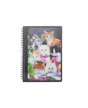 Zápisník A5 mačičky 21cm