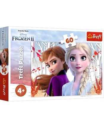 Puzzle 60 Frozen 2