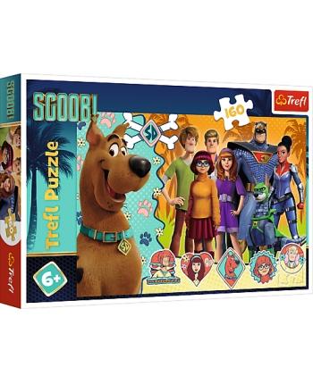 Puzzle 160 Scooby Doo v akcii