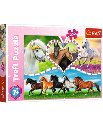 Puzzle 200 Nádherné kone