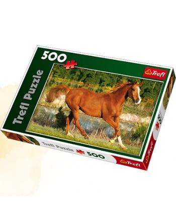 Puzzle 500 Krása cválajúcich koní