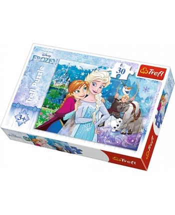 Puzzle 30 Frozen