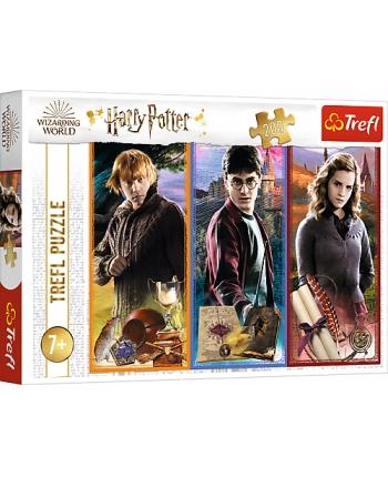 Puzzle 200 Harry Potter