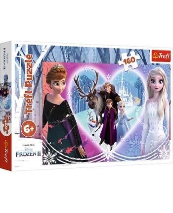 Puzzle 160 Frozen 2