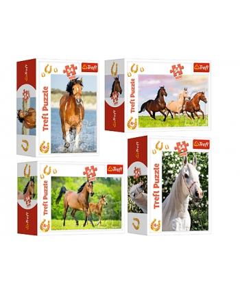Puzzle 54 mini Svet koní