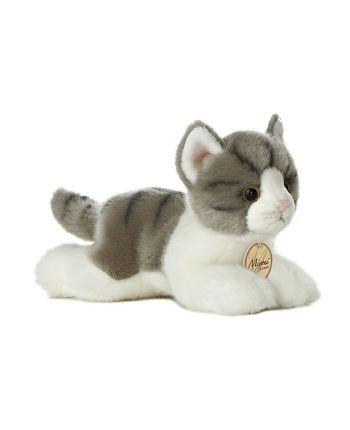 skutočné mačička pic