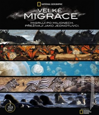 BLU-RAY Film - Kolekcia National Geographic: Velké migrace (2 bluray)