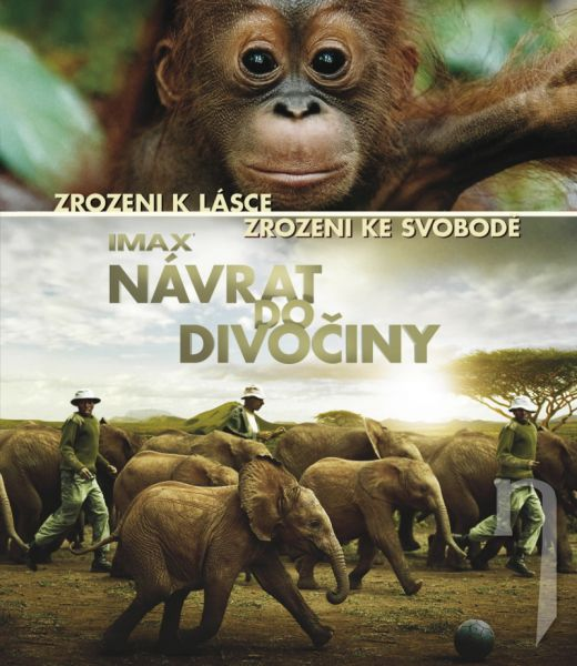 BLU-RAY Film - Návrat do divočiny
