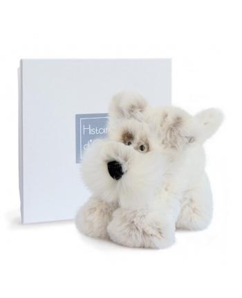 Plyšový psík Softy  v škatuľke - Histoire D´Ours (25 cm)