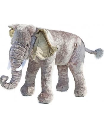 Plyšový slon - veľký - 75 cm