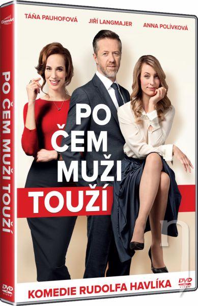 DVD Film - Po čem muži touží