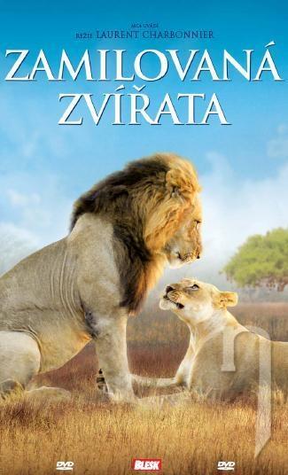 DVD Film - Zamilované zvieratá (papierový obal)