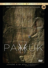 DVD Film - Pavúk