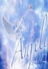 Kniha - Anjeli 2012 - stolový kalendár