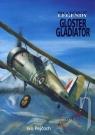 Kniha - Bojové legendy - Gloster Gladiator