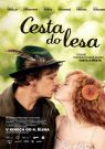 DVD Film - Cesta do lesa