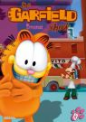 DVD Film - Garfield show 13.