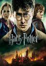 BLU-RAY Film - Harry Potter a Dary smrti - 2.časť (SK/CZ dabing 2 Bluray)