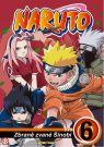 DVD Film - Naruto DVD VI. (digipack)