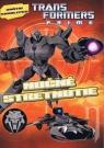 Kniha - Transformers - Nočné stretnutie