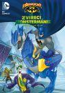 DVD Film - Všemocný Batman: Zvieracia Monstermánia